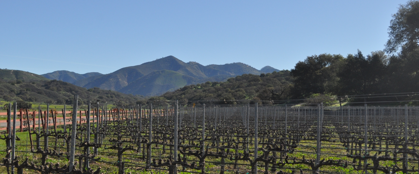 santa barbara wine country california