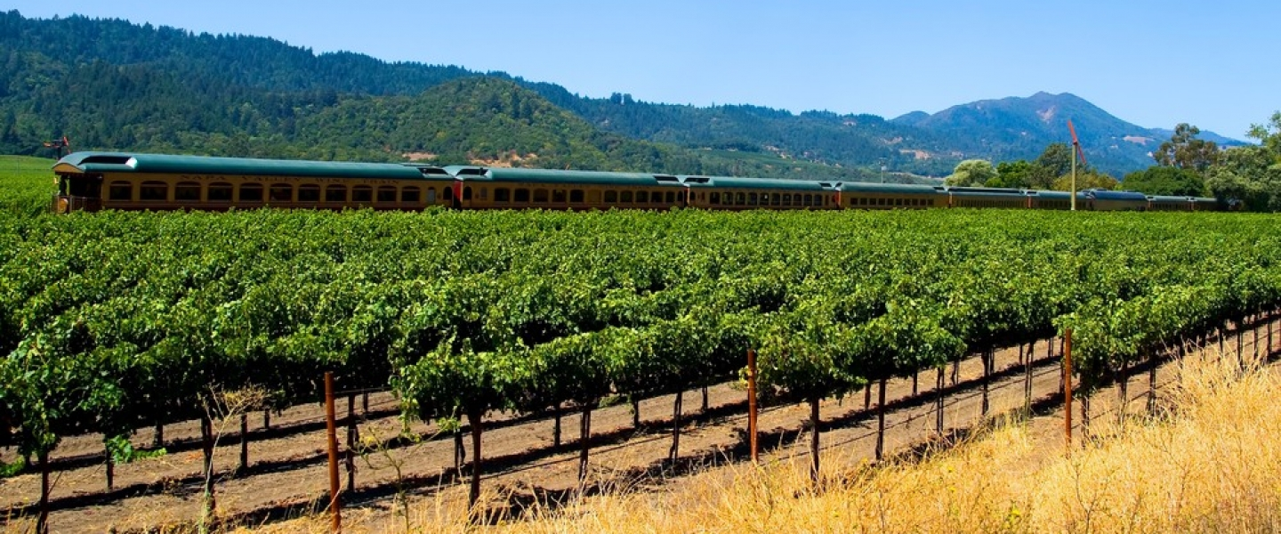 Napa Valley Wine Train and vineyards