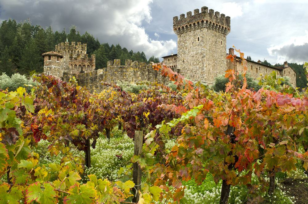 castello di amorosa coupon