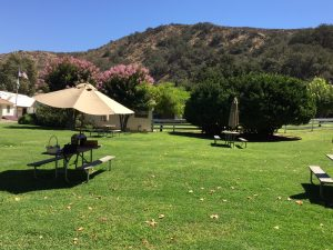 rancho sisquoc winery lawn