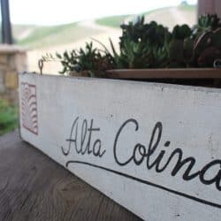 alta colina winery