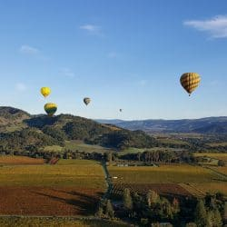 Hot air balloon napa