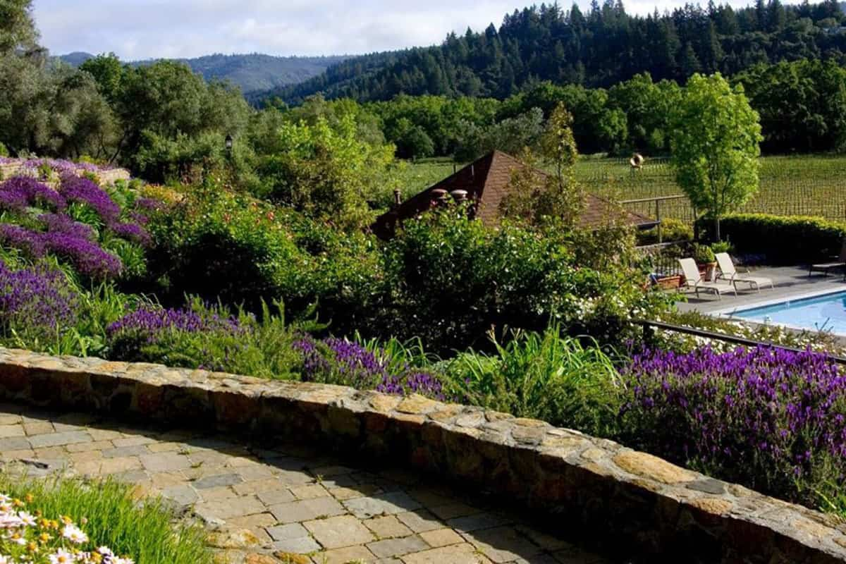 Cheap Hotels In Napa Valley