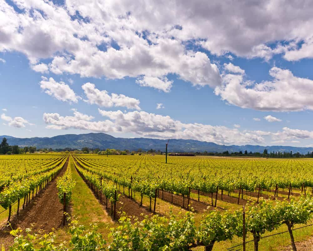 The Best Napa Valley Vacation Packages For 2019 - CWA