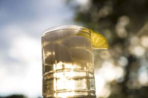 how to make a gin buck